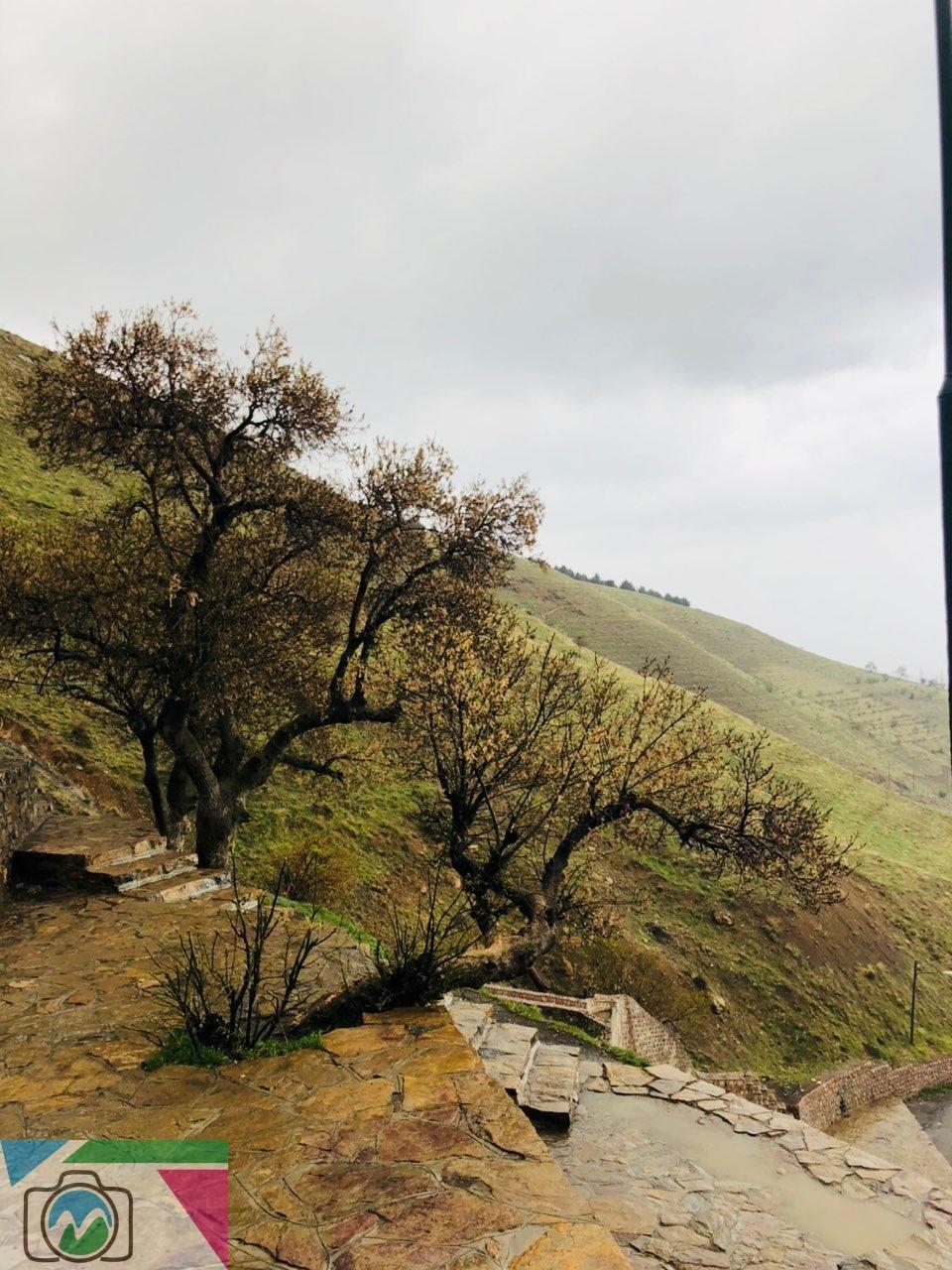 عکاسی از طبیعت - مریم اکبریانی